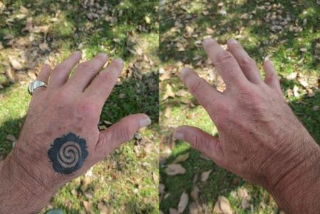 HANDS GRASS