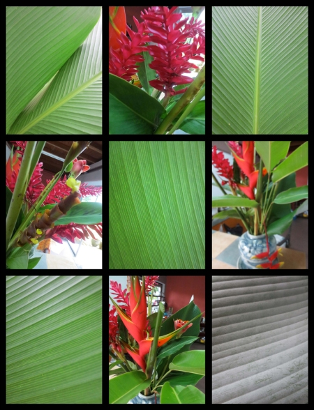 SUNDAY FLOWER 10_Page_2