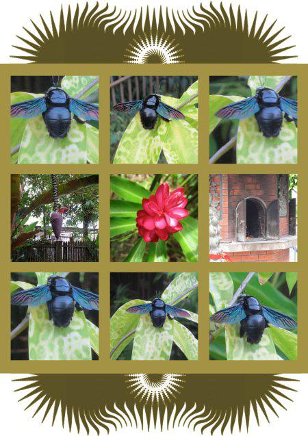 bee-hive-1-1