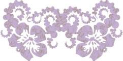 beatum-2-copyhibiscusa-copy1x2a