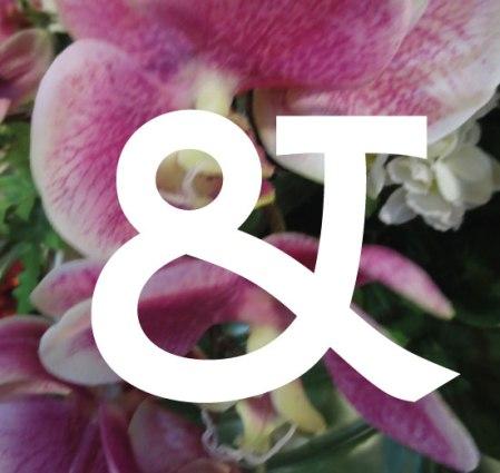 ampersand2