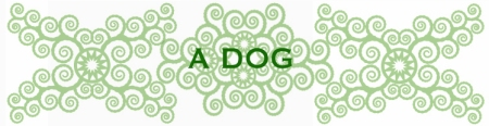 bees-work-blog-frida1-1DOG