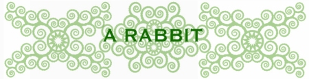 bees-work-blog-frida1-1RABBIT