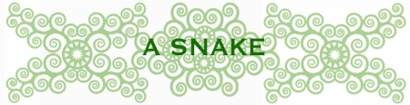 bees-work-blog-frida1-1SNAKE