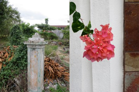 GATE-POST-BOUGANVILLIA