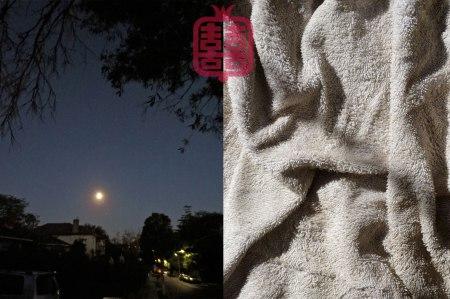 OZMOSIS-MOON-NIGHT