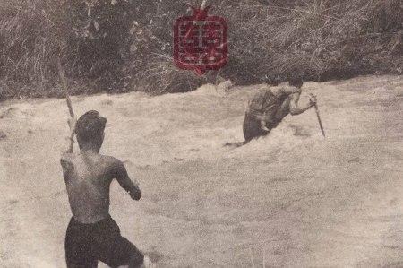 OZMOZIS-RIVER